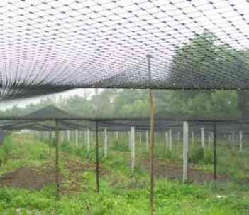 Redes p/ viveiros exteriores e gaiolas de aves