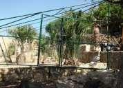 Viveiros canis cercas voadores para animais por medida.