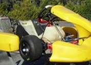 Pcr advance c/ rotax max fr 125cc de 2008