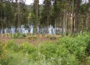 Ref. a042 - terreno junto ao rio mondego...