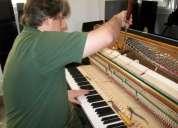 Técnico afinador de pianos.