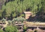 Terreno com casita em xisto (125po)